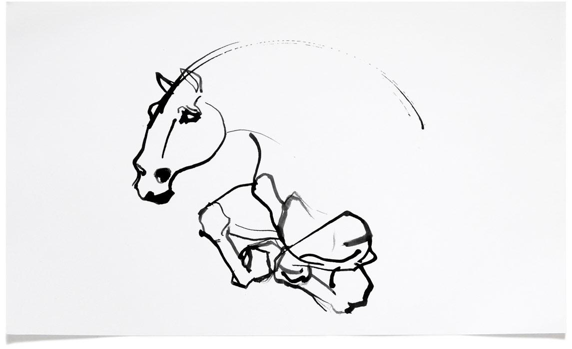 Horse Illustrations - Ink Illustration by Eri Griffin