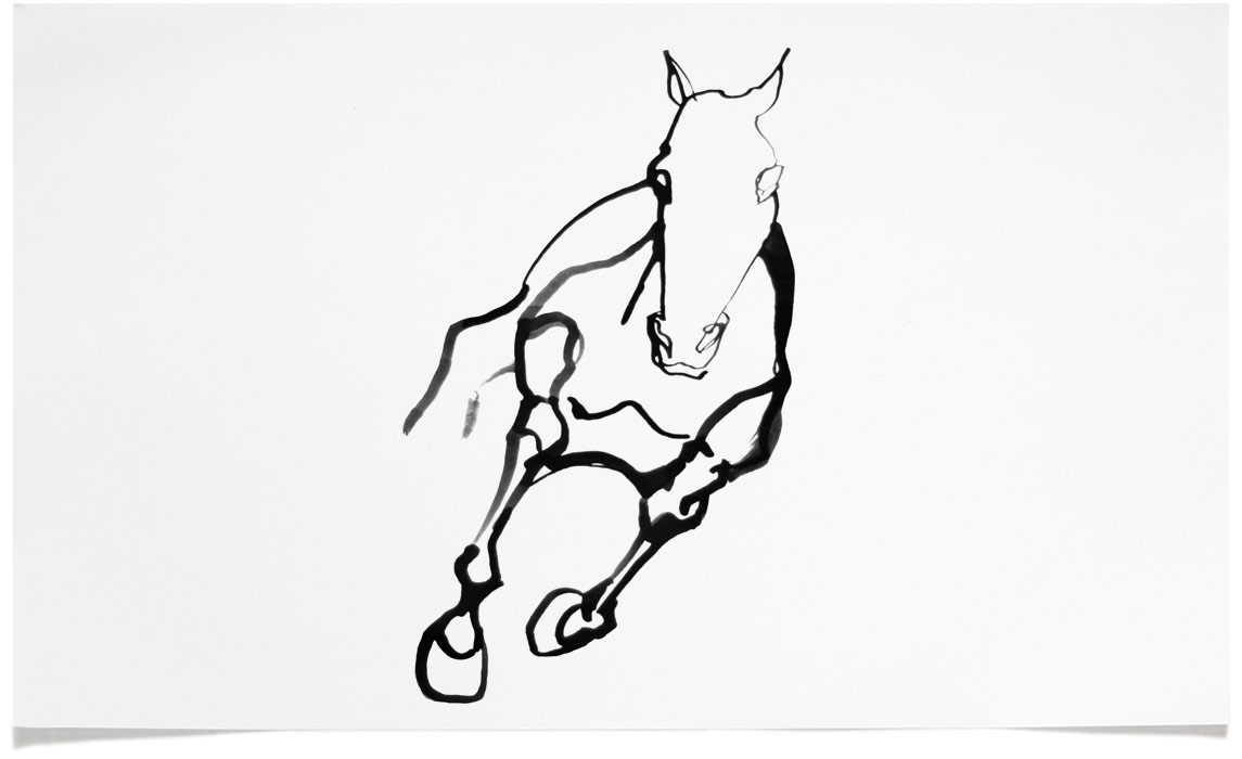 Horse Illustrations : Eri Griffin : Ink art : Black and White