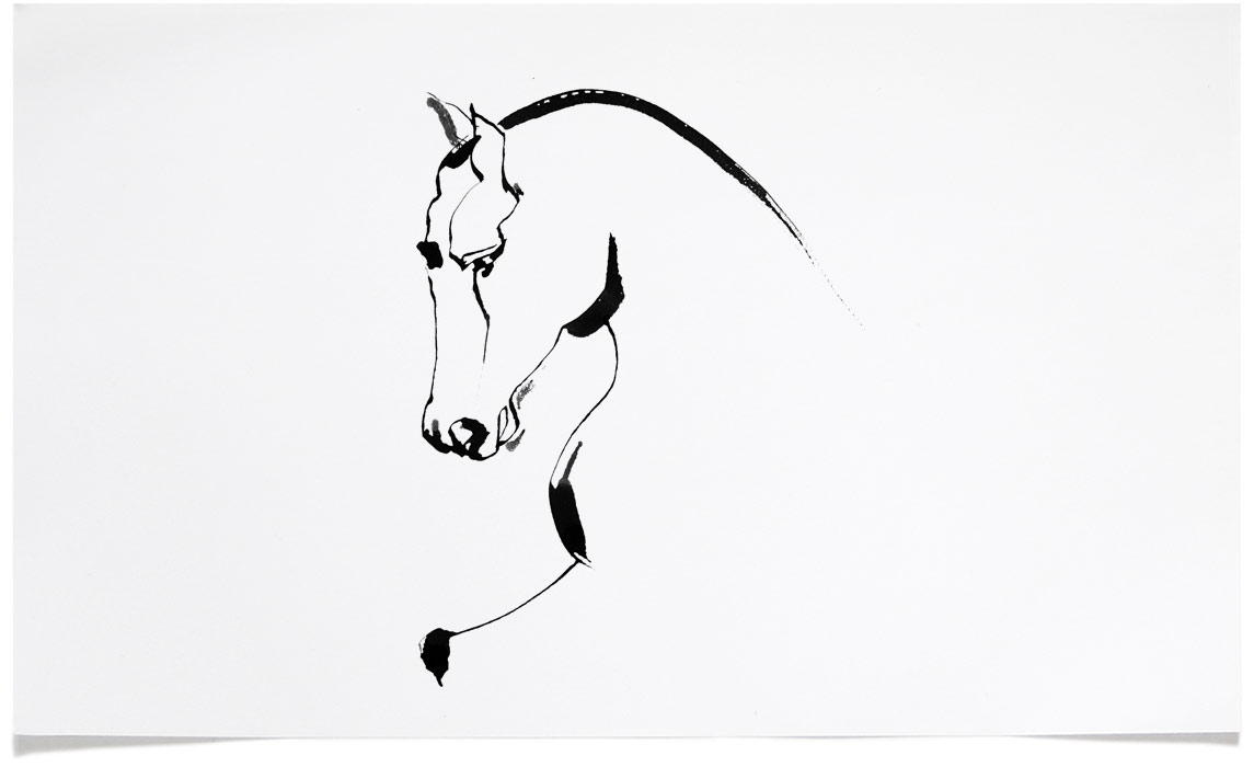 Horse Illustrations - Ink Illustration by Eri Griffin