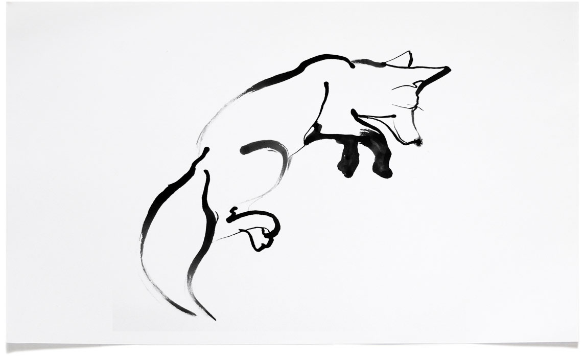Fox - animal wildlife Illustrations - Ink Illustration by Eri Griffin