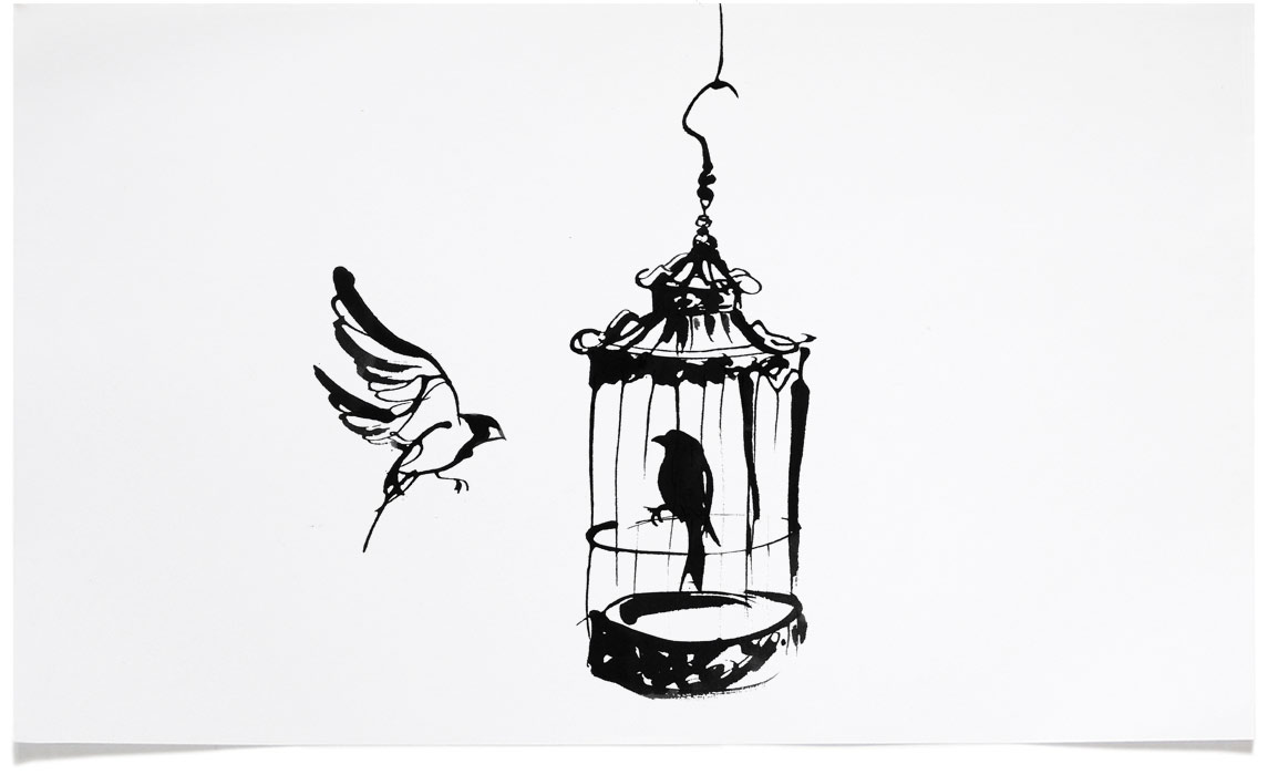 Bird Cage - animal wildlife Illustrations - Ink Illustration by Eri Griffin