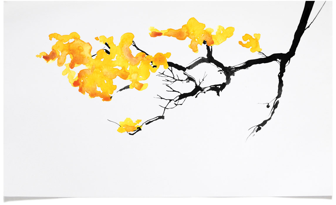 Autumn Tree - animal wildlife Illustrations - Ink Illustration by Eri Griffin